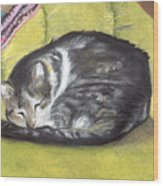 Comfortable Cat Wood Print