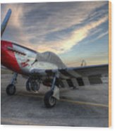 Comfortably Numb Buttoned Up For The Night At The Hollister Airshow Wood Print