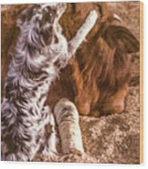 Comforting The Heifer With A Broken Leg Wood Print