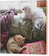 Comfy Bella And Cat Wood Print