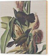 Common Crow Wood Print