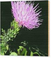 Common Weed Wood Print