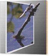 Common Whitetail Wood Print