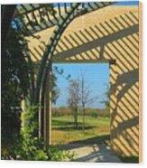 Commons Park Wood Print