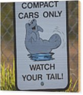 Compact Cars Only Sign Wood Print