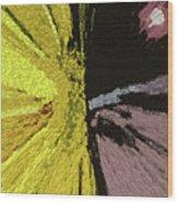Competing Suns Wood Print