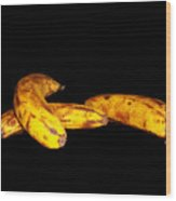 Completely Bananas Wood Print