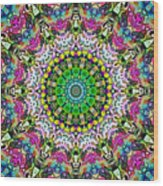 Concentric Colors Abstract Wood Print