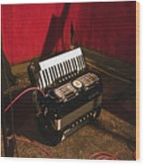 Concertina On The Floor Wood Print