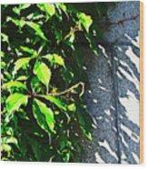 Concrete Green Wood Print