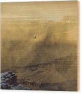 Condor In A Storm Wood Print