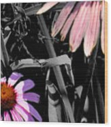 Cone Flower Tapestry Wood Print
