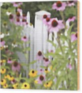 Cone Flowers And Fence Wood Print