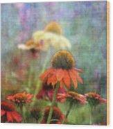 Coneflower Garden 2789 Idp_2 Wood Print