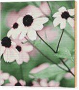 Coneflowers No. 8-2 Wood Print
