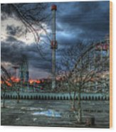 Coney Island Wood Print