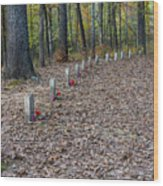 13 Unknown Confederate Soldiers - Natchez Trace Wood Print