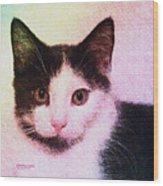 Confetti Kitty Wood Print