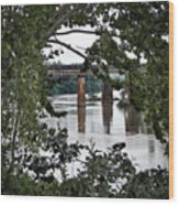 Congaree River Glimpse Wood Print
