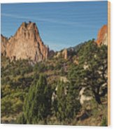 Coniferous Trees In The Garden Of The Gods Wood Print