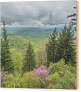 Conifers And Blooms Wood Print