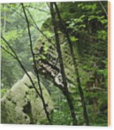 Conkle's Hollow Stone Arch Wood Print