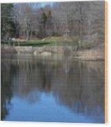 Connecticut College Arboretum  Wood Print
