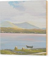 Connemara Cottage 2011 Wood Print