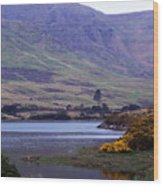 Connemara Leenane Ireland Wood Print