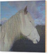 Connemara Pony Wood Print