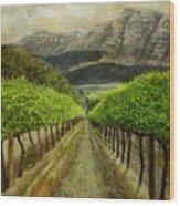 Constantia Uitsig Vines Pleine Aire Wood Print