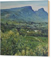 Constantia Valley Cape Town South Africa 2017 Wood Print