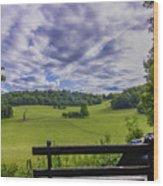 Contemplating The Beautiful Scenery Wood Print