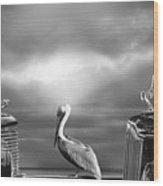 Contemplating The Pelican Wood Print