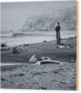 Contemplation - Beach - California Wood Print