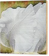 Contemporary White Iris Wood Print