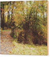 Contented Path Wood Print