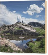 Continental Divide Above Twin Lakes 2 - Weminuche Wilderness Wood Print