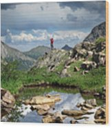 Continental Divide Above Twin Lakes 4 - Weminuche Wilderness Wood Print