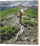 Continental Divide Above Twin Lakes 7 - Weminuche Wilderness Wood Print