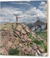 Continental Divide Above Twin Lakes - Weminuche Wilderness Wood Print