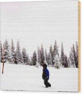 Continental Divide January 1 2000 Wood Print