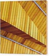 Contour And Design Wood Print