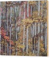 Converging Colors Wood Print