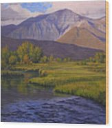 Convict Creek-eastern Sierras Wood Print