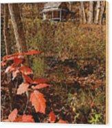 Cook Cabin Wood Print