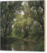 Cook County Forest Preserve No 6 Wood Print