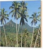 Cook Islands Wood Print