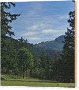 View Of Underwood Mountain Wood Print