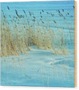 Cool Blue Blowing In The Wind Wood Print
